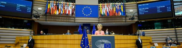 State_of_the_EU_2020.jpg